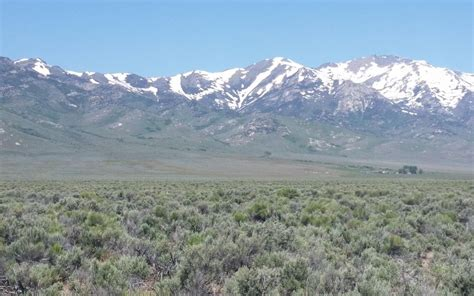 40 acres, Wells, NV, Property ID: 4453675   Land and Farm