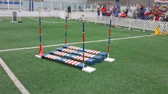 Agility Ring - Game Time Training Complex | Fairfield OH