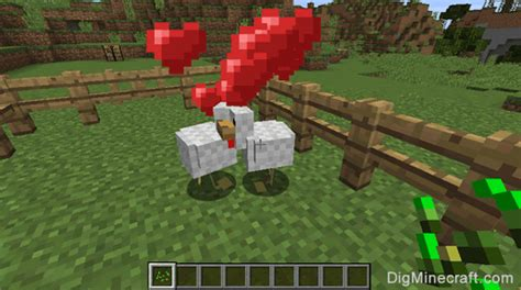 How to breed chickens in Minecraft (and more tutorials