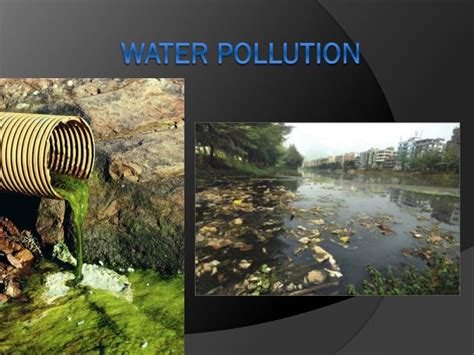 PPT - Water pollution PowerPoint Presentation, free