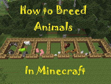 How to Breed Animals in Minecraft | LevelSkip