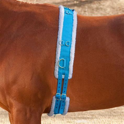 Shires Lunging Surcingle with Fleece Padding – Horse